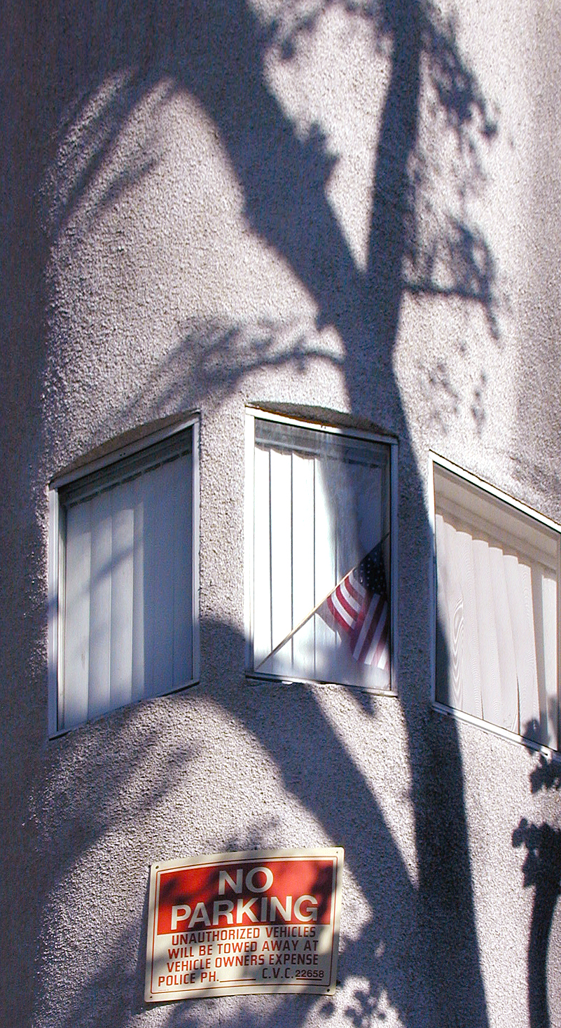 Flag, Tree, Shadow